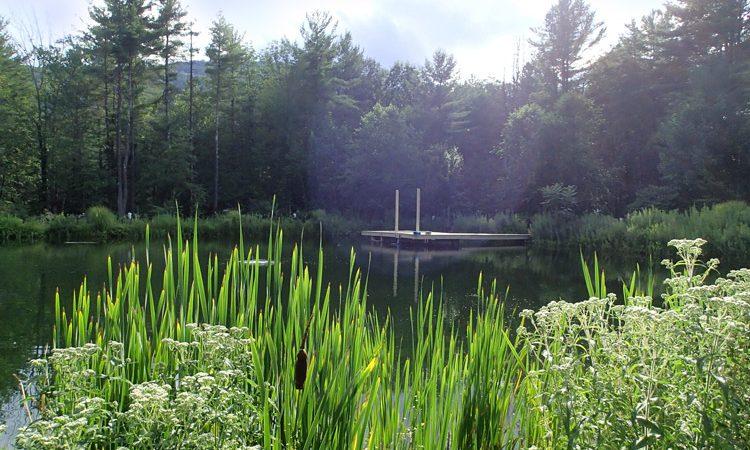 Schuman_pond_8013352